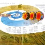 """""""Escala cronológica da vida na Terra"""", in Vida e Evolução, Vol. I, Edições El Prado"""