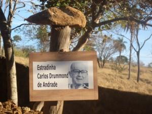 Estradinha C. Drummond - Ninho das Pedras