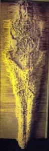 Sudário11